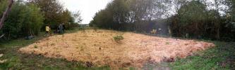 Plantation d'une mini-forêt de 600 arbres en Bretagne et mode d'emploi pour se lancer.. Dl1267?display&x=333&y=100